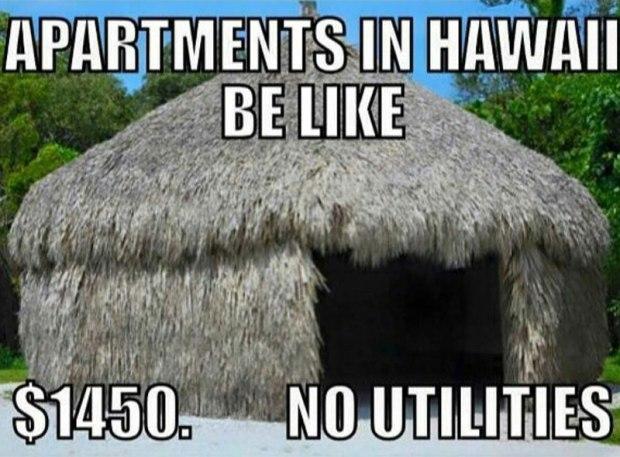 hawaii-memes-rent